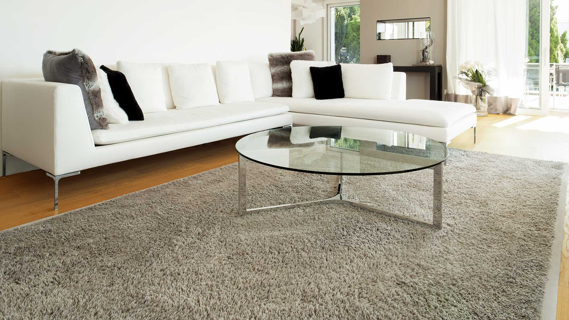 Carpet Cleaning Services, Air Duct Cleaning and Furniture Cleaning Services